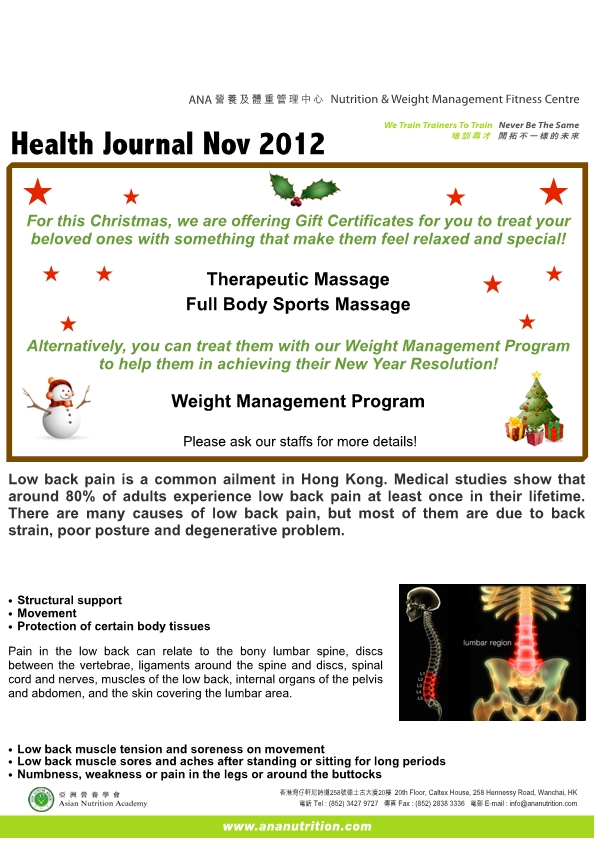 2012_11_EMAIL Health Journal Nov-page1
